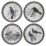 Uttermost 4 Piece Birds Wall Decor Set