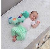 Summer Infant Slumber Cuddle Bug