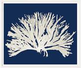 William Stafford Navy Blue Coral I Art