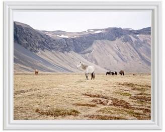 Pottery Barn Icelandic Horses by Jennifer Meyers