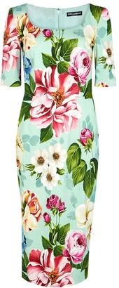 Dolce & Gabbana Mint floral-print midi dress