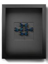 Azure Damselfly Diamond (Shadow Box Frame)