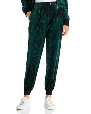 Pam & Gela Snake Print Velour Jogger Pants