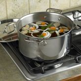 All-Clad Stainless Steel Stockpots