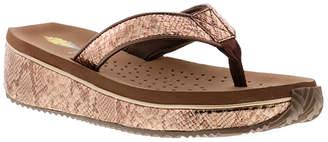 Volatile Women's Sandals BRONZE - Bronze Jenks Wedge Sandal - Women