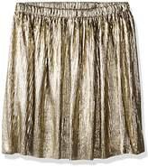 Crazy 8 Little Girls' Metallic Pleated Skirt