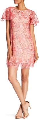 Taylor Embroidered Mesh Lace Sheath Dress