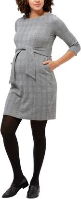 Nom Maternity Frances Long Sleeve Maternity/Nursing Dress
