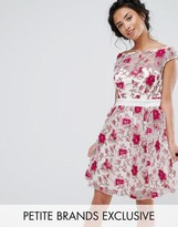 Little Mistress Petite Premium Embroidered Skater Dress