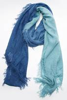 Echo Blue Ombre Scarf