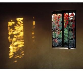 Posterazzi Window With Creeper Butterstream Co Meath Ireland Canvas Art - The Irish Image Collection Design Pics (32 x 26)