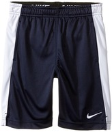 Nike Dry Fly Shorts (Little Kids)