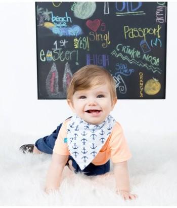 The Honest Company Infant Organic Cotton Bandana Bib