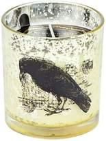 D.L. & Co. Bird Tumbler Candle (8 OZ)