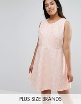 AX Paris Plus Skater Dress In Lace