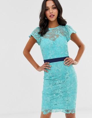 Paper Dolls crochet lace pencil dress-Blue