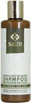 Alaffia Scalp Recovery Shampoo