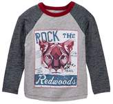 Joe Fresh Graphic Raglan Tee (Toddler & Little Boys)
