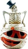 Special T Imports Skeleton Light up Jack-O-Lantern Halloween Figurine