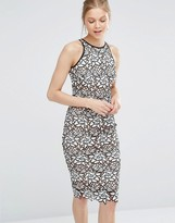 Coast Ritvina Lace Pencil Dress