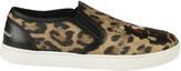 Dolce & Gabbana Tan Leopard Print Sneakers