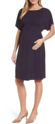 Isabella Oliver Leila Maternity Dress