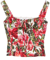 Dolce & Gabbana Rose Print Poplin Bustier Top