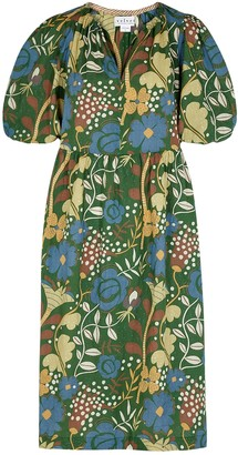 Velvet by Graham & Spencer Virginia Printed Cotton Dress