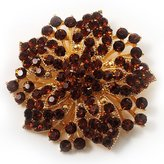 Avalaya Victorian Corsage Flower Brooch (Amber Coloured)
