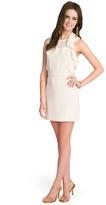 Ruffle Blush Dress