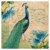Thirstystone Peacock Travertine Trivet