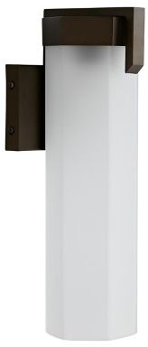 Arteriors Alessia Outdoor Wall Sconce