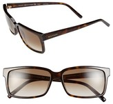 Tommy Hilfiger 57mm Retro Sunglasses