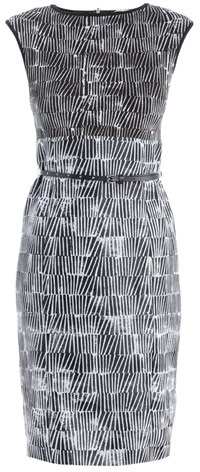 Max Mara Flipper Dress
