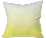 DENY Designs Deny Ombre Decorative Pillow, 20 x 20