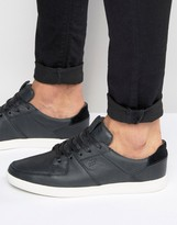 Boxfresh Cladd Leather Sneakers