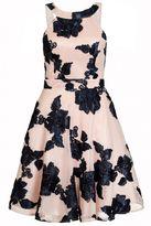 Quiz Nude And Navy Mesh Flower Applique Dress