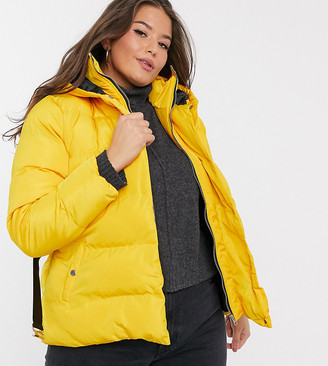 Simply Be belted padded coat in yellow