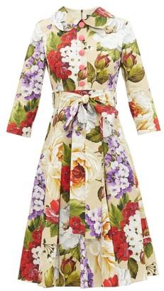 Dolce & Gabbana Peter Pan-collar Floral-print Cotton Dress - Beige Print