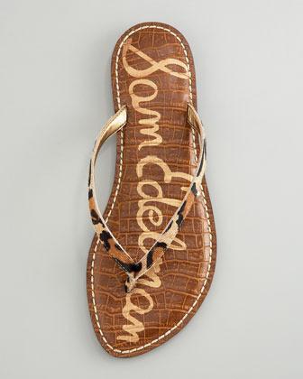 Sam Edelman Gracie Flat Thong Sandal (CUSP Most Loved!)