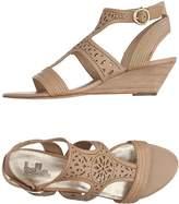 Belle Sandals - Item 11172534