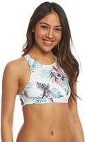 Roxy Shady Palm Crop Bikini Top 8160118