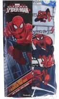 """Spiderman Big Boys' """"Spider Justice"""" 3-Pack Briefs"""