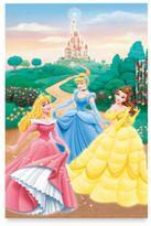 Disney Princess Garden Window Poster