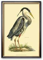 Art.com ''Great Blue Heron'' Framed Art Print by Prideaux John Selby