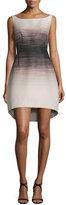 Halston Sleeveless Ombre Structured Dress, Buff/Black