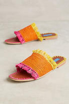 Proud Mary Raffia Fringe Slide Sandals