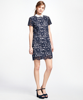 Brooks Brothers Cotton-Blend Lace Dress