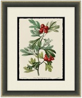 Holly Berry Wall Art