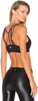 Vimmia Foundation Sport Bra